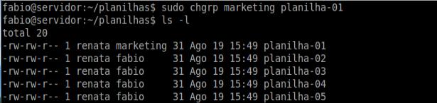 Comando chgrp - Linux Ubuntu