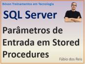 Parâmetros de entrada em procedimentos armazenados no SQL Server