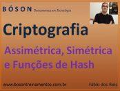 Criptografia Simétrica, Assimétrica e Funções de Hash