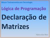 Declaração de Matrizes em Lógica de Programação