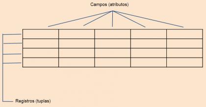 Campos e registros no MySQL