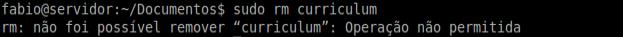 Alterar atributos de arquivos no Linux com comando chattr