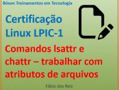 Comandos lsattr e chattr no linux