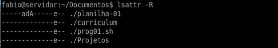 Comando lsattr no linux - verificando atributos de arquivos