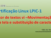 Editor de Textos vi 02 - Linux