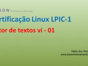 Editor de textos vi no Linux