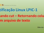 miniatura_cut