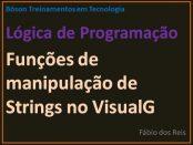 Funções de Manipulação de Strings no VisualG