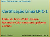 Editor de textos vi - recortar e copiar no Linux