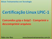 Comandos gzip e bzip2 no Linux - LPIC 1