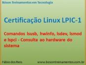 lsusb, hwinfo, lspci, lsdev - Linux LPI 1