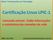 Comando netstat no Linux - LPIC 1