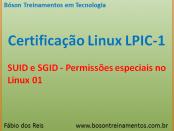 SUID e SGID - permissões no Linux LPIC 1