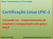 Comandos tar, gzip e bzip2 no Linux - LPIC 1
