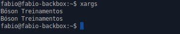 Comando xargs - Bóson Treinamentos com echo - Linux