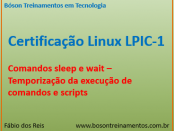 Comandos sleep e wait no Linux LPI