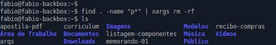 Comando xargs combinado com find e rm no Linux