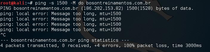 Ping na Bóson com payload de 1500 e bit DF desativado no Linux