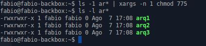 Alterando permissões com xargs e chmod no Linux - LPI 1