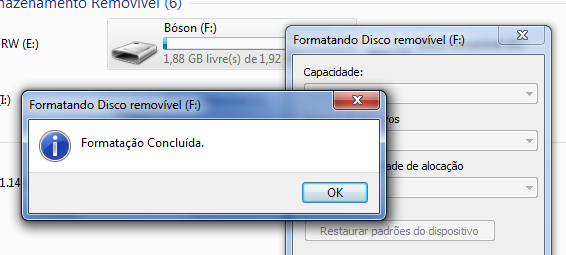 Pendrive formatado no Windows
