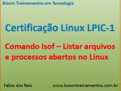 Comando lsof no Linux - Listar arquivos e processos abertos