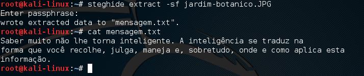 Steghide no Linux Kali - Extraindo dados secretos
