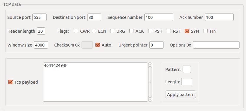 Camada de Transporte - Protocolo TCP no packETH - Ubuntu Linux
