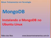 Instalar Banco de Dados MongoDB no Linux Ubuntu