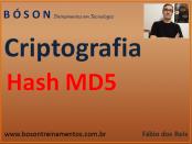 Hash MD5 - Criptografia