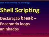 Declaração break em loops aninhados - Shell Script