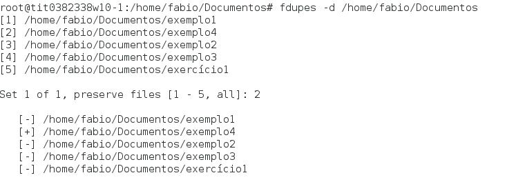 Excluindo arquivos duplicados no Linux com fdupes