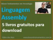 5 livros grátis de linguagem assembly