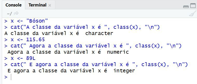 Variáveis em Linguagem R