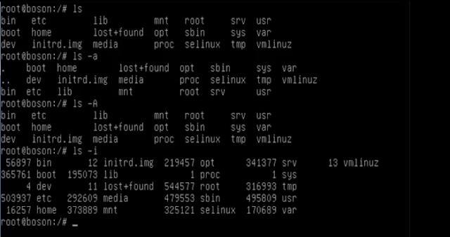 Console do Linux Debian, com alguns comandos sendo executados (imagem: Fábio dos Reis)