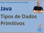 Tipos de Dados Primitivos em Java