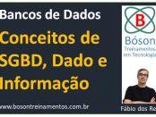 Conceito de Dado, Informação, SGBD e Bancos de Dados