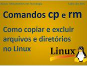 Como copiar e excluir arquivos no linux com comandos cp e rm
