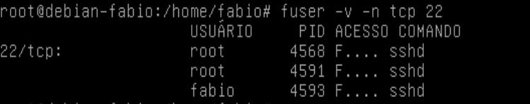 Comando fuser no Linux