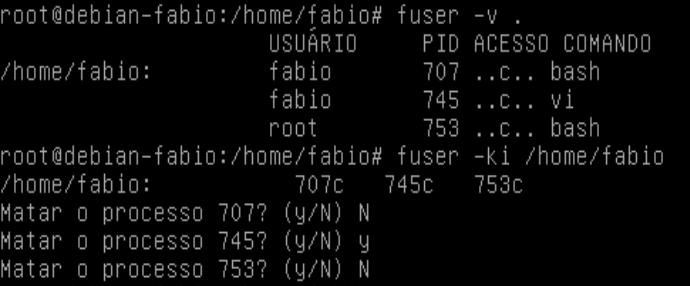 Matar processo com comando fuser no Linux