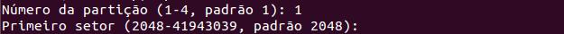 Escolher tipo de particionamento com fdisk no Linux