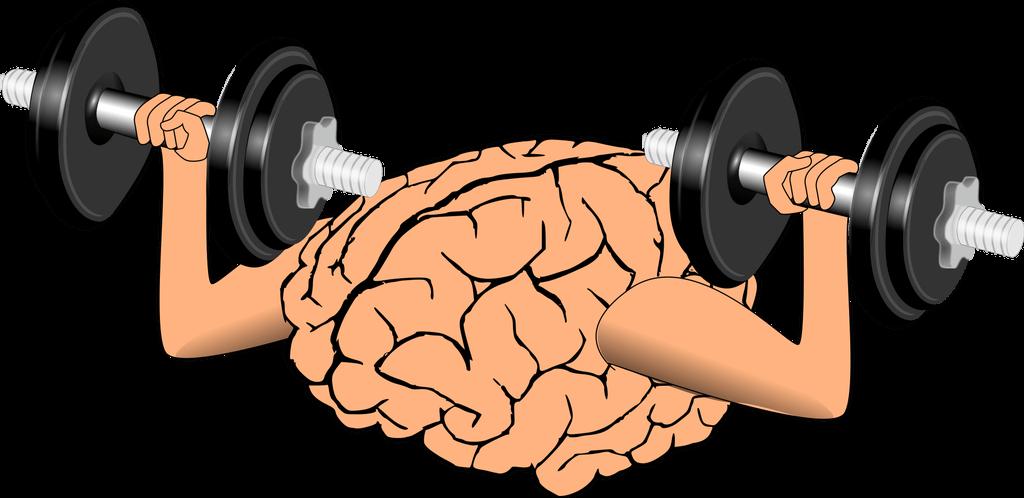 Exercitando o cérebro para melhorar a memória e a concentração