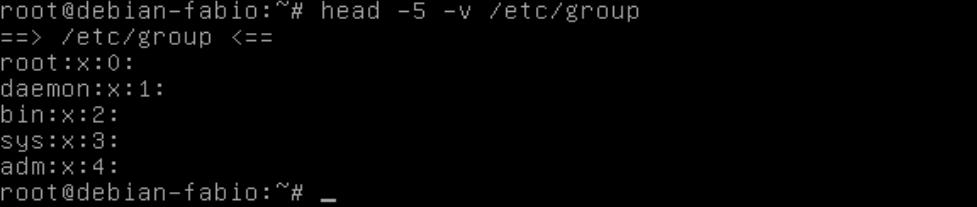 usando o comando head no Linux