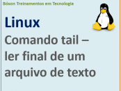 Ler linhas finais de um arquivo de texto no linux com comando tail