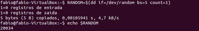 Arquivos aleatórios no Linux com random
