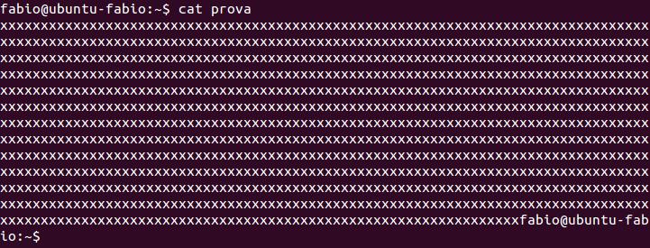Como apagar arquivos no linux em definitivo