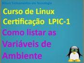 Como listar variáveis de ambiente e variáveis de shell no Linux