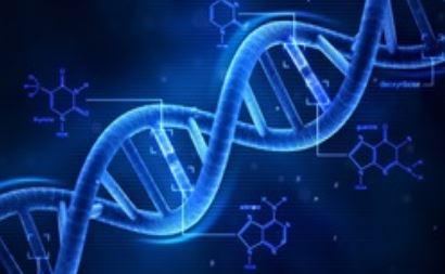 Reconhecimento biométrico por DNA